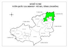 VQG-TINH